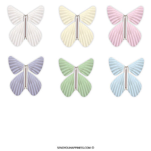 Vlinder Butterfly Feather Totall Assortiment copyright sendyouhappiness.com