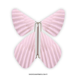 Magic Vlinder Feather Pastel Pink copyright sendyouhappiness.com
