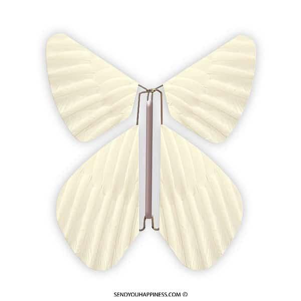 Magic Vlinder Feather Pastel Yellow copyright sendyouhappiness.com