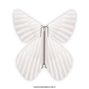Magic Vlinder Feather Pearl White copyright sendyouhappiness.com