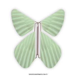Magic Vlinder Feather Sea Green copyright sendyouhappiness.com