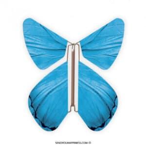 Magic Vlinder Impuls Blue copyright sendyouhappiness.com