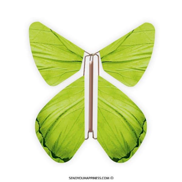 Magic Vlinder Impuls Green copyright sendyouhappiness.com