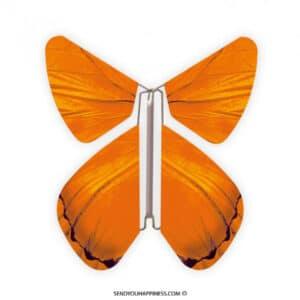 Magic Vlinder Impuls Orange copyright sendyouhappiness.com