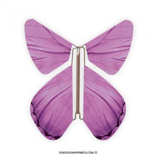 Magic Vlinder Impuls Purple copyright sendyouhappiness.com