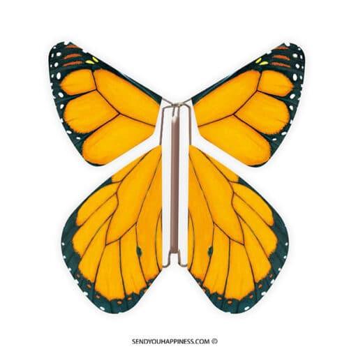 Magic Vlinder Nature Monarch copyright sendyouhappiness.com