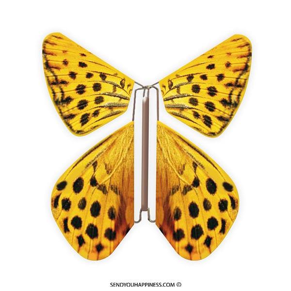 Magic Vlinder Nature Panther copyright sendyouhappiness.com