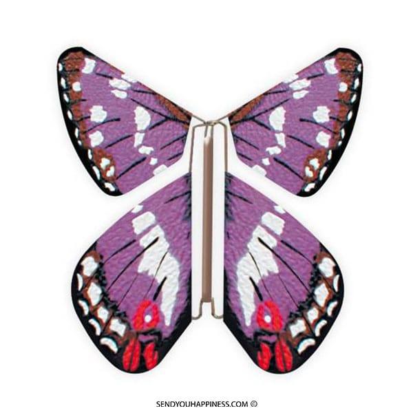 Magic Vlinder Nature Purple Emperor copyright sendyouhappiness.com