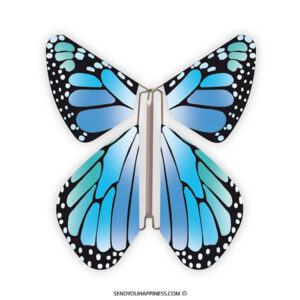 Magic Vlinder New Concept Blue copyright sendyouhappiness.com