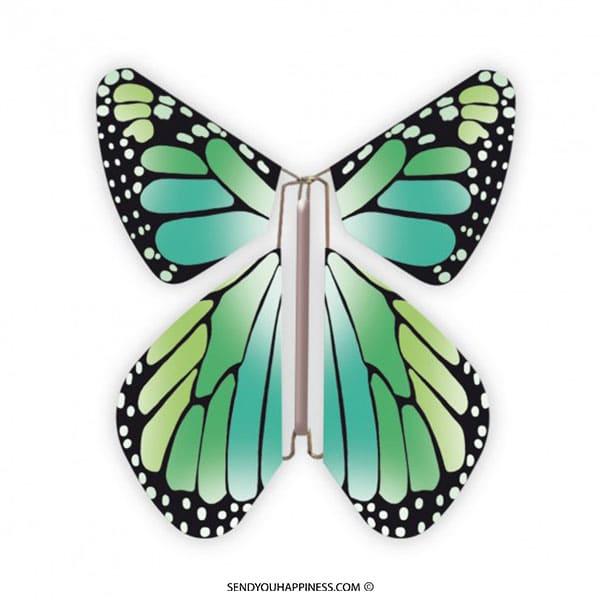 Magic Vlinder New Concept Green copyright sendyouhappiness.com