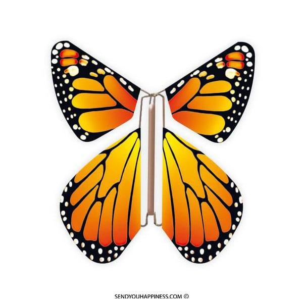 Magic Vlinder New Concept Orange copyright sendyouhappiness.com