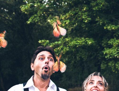 Geschiedenis van de Magic Vlinder