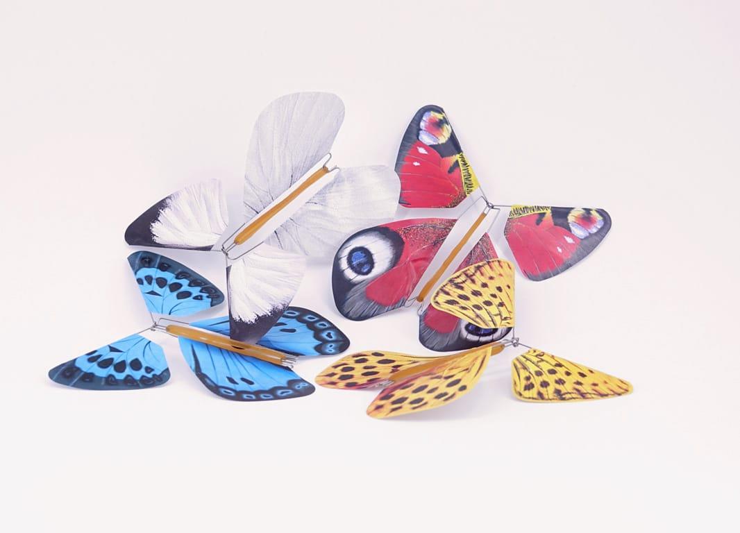 Magic Nature Vlinders