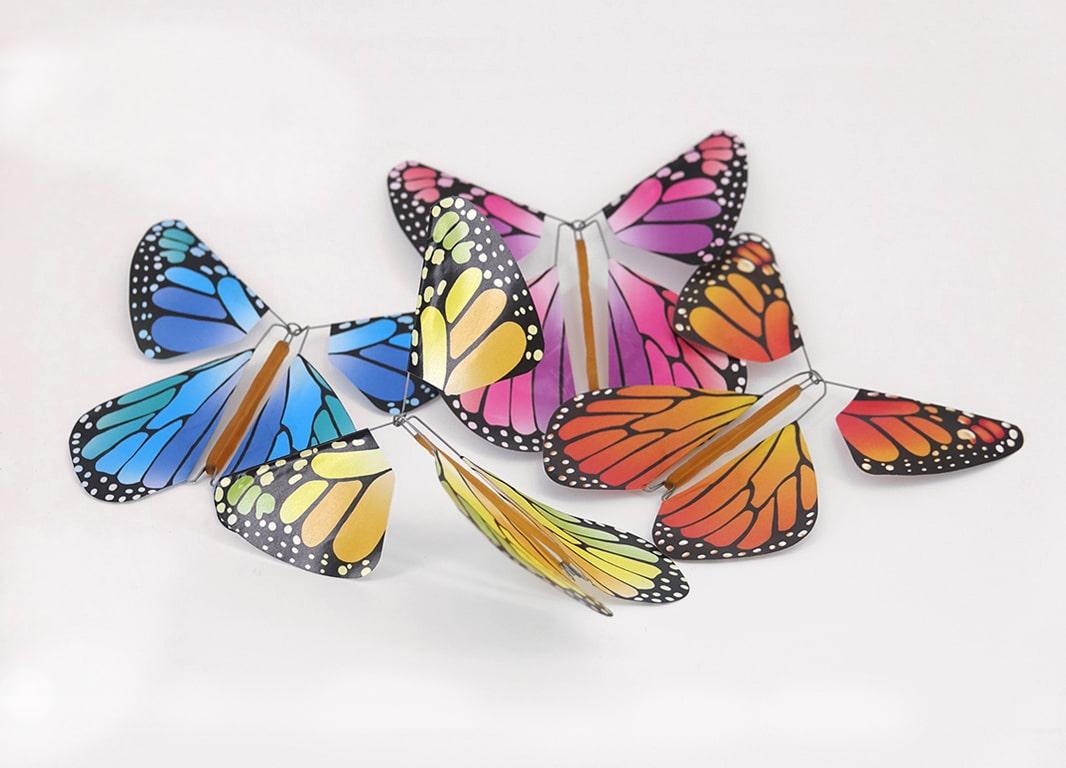 Magic New Concept Vlinders