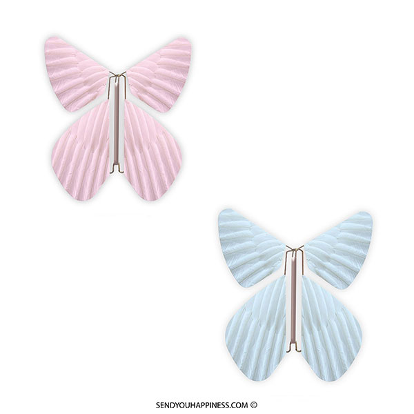 Magic Flyer Butterfly Feather Gender Pastel Pink Pastel Blue copyright sendyouhappiness.com